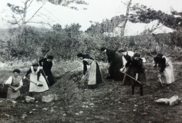 Female patients on medium grade work in the gardens circa 1910.